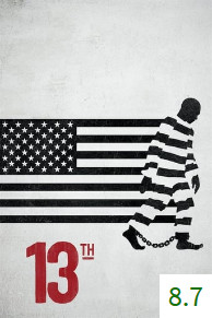 Poster for 13th with an average rating of 8.7.